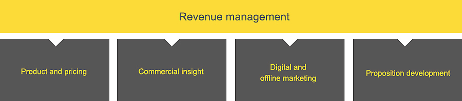 Revenue management diagram